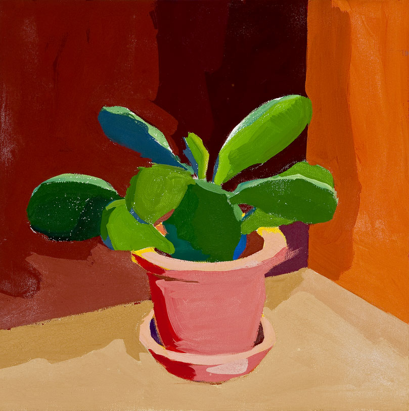 Kaktus 37, 11. 6. 2011