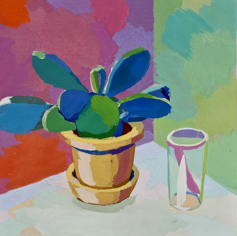 Kaktus 44, 15. 7. 201
