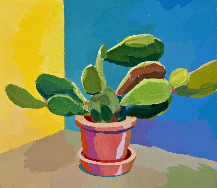 Kaktus 49, 15. 8. 2011