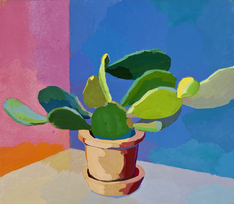 Kaktus 50, 20. 8. 2011
