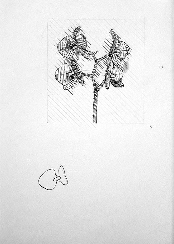 Cvetovi 2, 2006