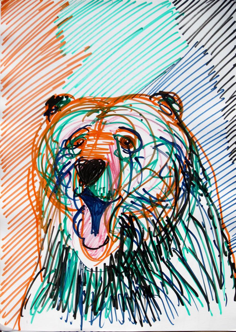 Medved, avgust 2017