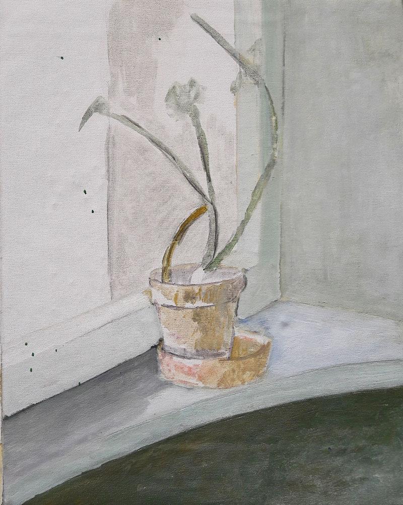 Lončnica na okenski polici, 1997