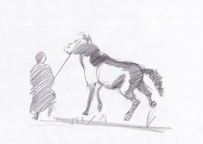 Lovilec konj 2, 2007