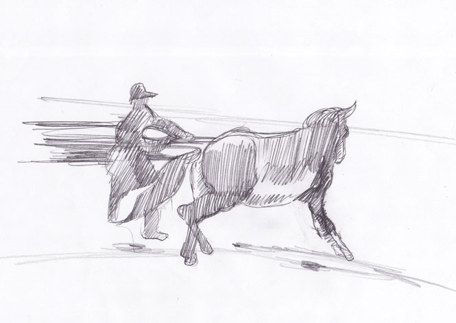 Lovilec konj 3, 2007