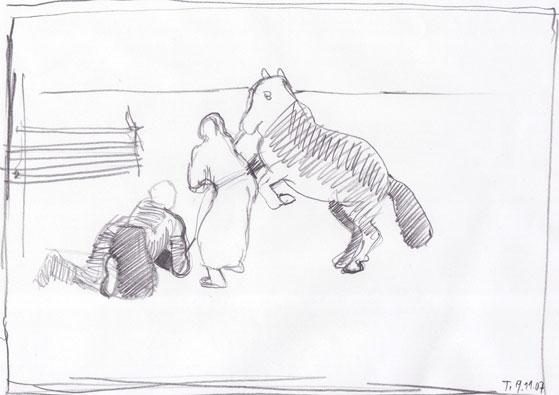 Lovilec konj 5, 2007